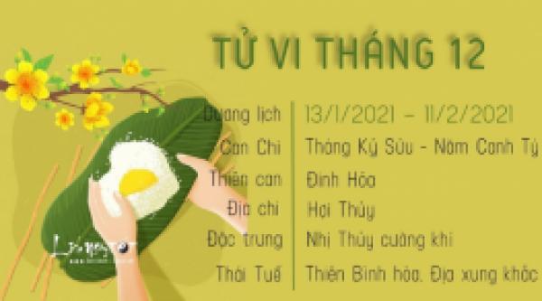 tu-vi-thang-12-2020-am-lich-tuoi-mao-suy-nghi-bi-quan-doi-dau-nghich-canh