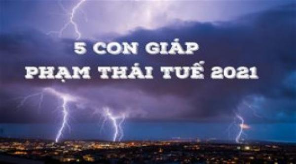 canh-bao-5-con-giap-pham-thai-tue-2021-van-trinh-di-xuong-nghiem-trong